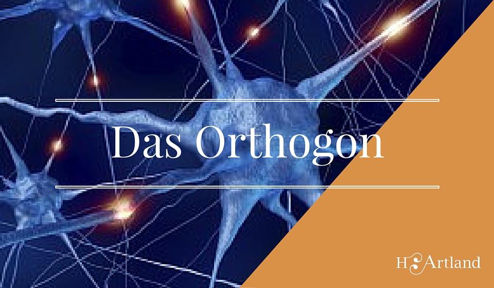 das orthogon - eine performance ueber das system mensch